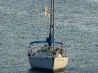 barco navegando hacia una cala