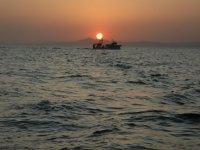 大海和阳光