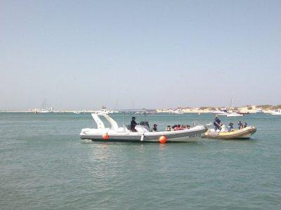 Alquiler de barco a motor en Sancti Petri, 2h