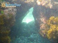 Subacuaticas - Snorkel