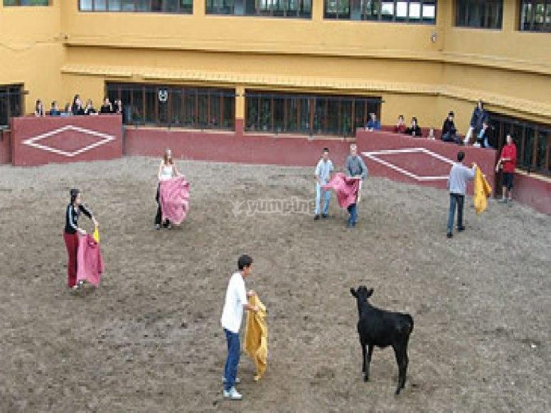 Capea e spettacolo a Salamanca