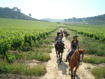 Champion Horse Club Rutas a Caballo