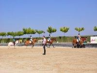 Clases de equitación