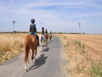 Pony Club Carrusels