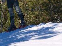 黄昏雪鞋雪鞋雪鞋设备