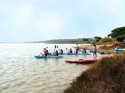 Noleggio kayak doppio a El Rompido 1 ora