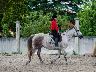 Horse riding lessons in Sesamo 2h