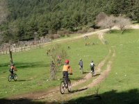 Niños en bici pasándolo en grande