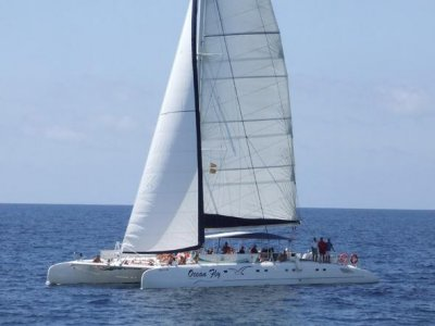 Exclusive catamaran ride for groups, 3h