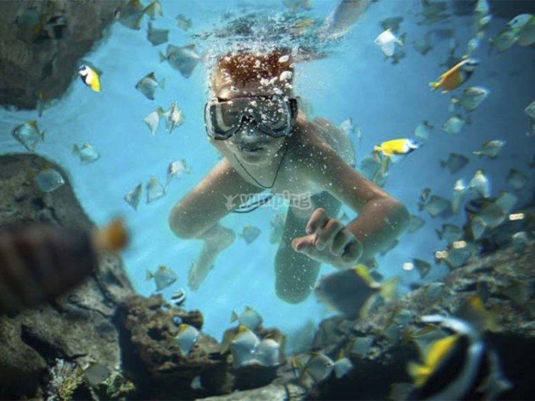 Haciendo snorkel en la costa menorquina