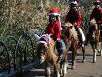 Paseo en poni en Navidad