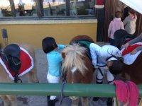 Preparando los ponis