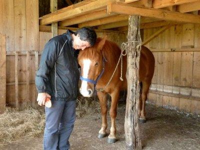 Paquete alojamiento, comida y actividades caballos