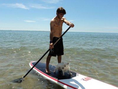 Delta Paddle Surf School
