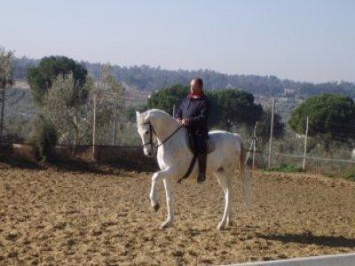 Ruta a caballo 1 hora en La Puebla del Río