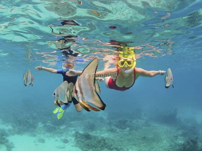 Snorkel en playas vírgenes de la costa menorquina