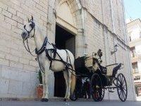 El caballo en la puerta de la catedral