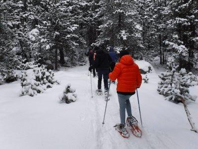 Vallter的雪鞋路线2小时