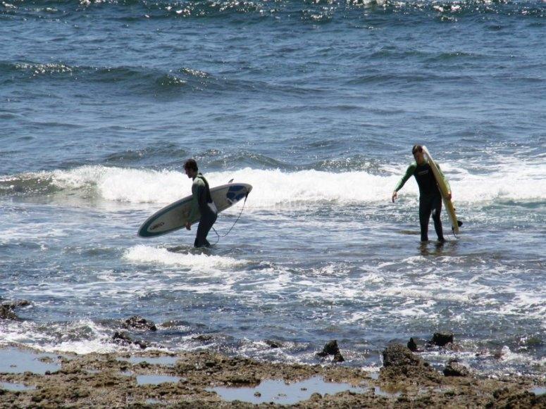 在Playa las Americas的Surfea