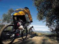Disfruta de un buen día en bici