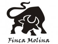 Finca Molina Team Building