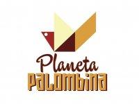 Planeta Palombina Esquí Acuático