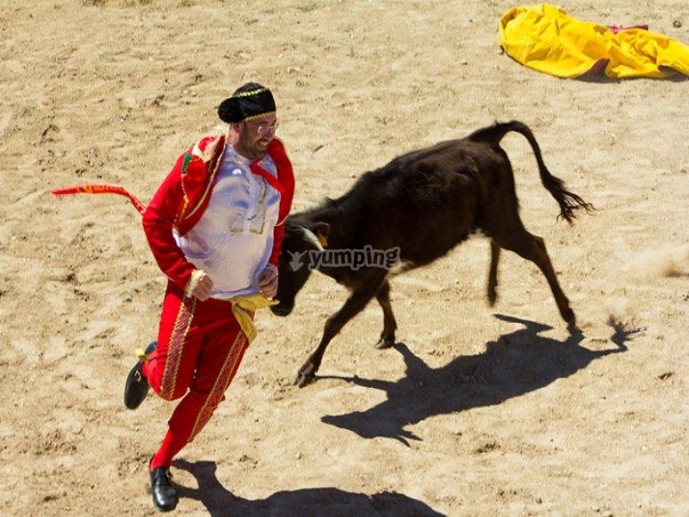 Dressed as bullfighter