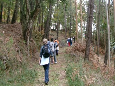 Escursioni a Silleda, part-time