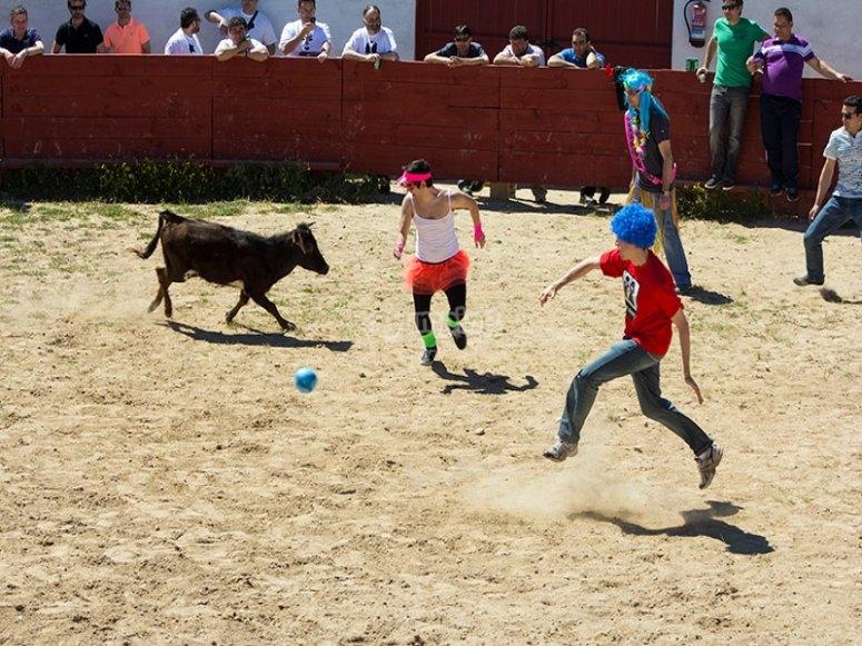 Jugando al futbol con la vaquilla