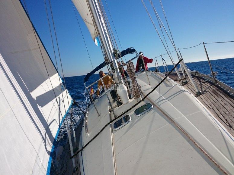 帆船航行路线