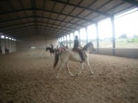 classes on the covered track