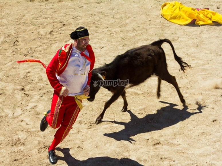 Dress up as a bull-fighter