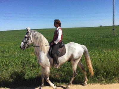 A caballo por el campo sevillano