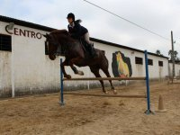 Jumping lessons in San Juan de Aznalfarache