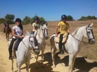 Young people on white horses in Seville