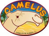 Camellos de Almería Paseos en Camello
