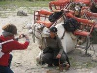 Fotografia con un simpatico camello