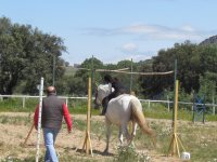 Overcoming the obstacles on horseback