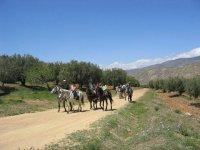de ruta en caballo