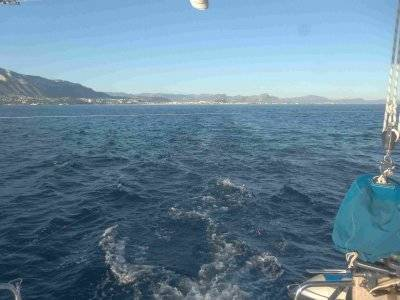 Sailing boat ride Islote of Benidorm