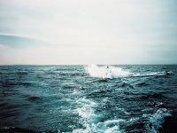 Rutas en motos de agua por fuerteventura