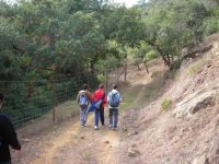 徒步旅行Alcornocales