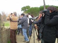 Iniciación Ornitología