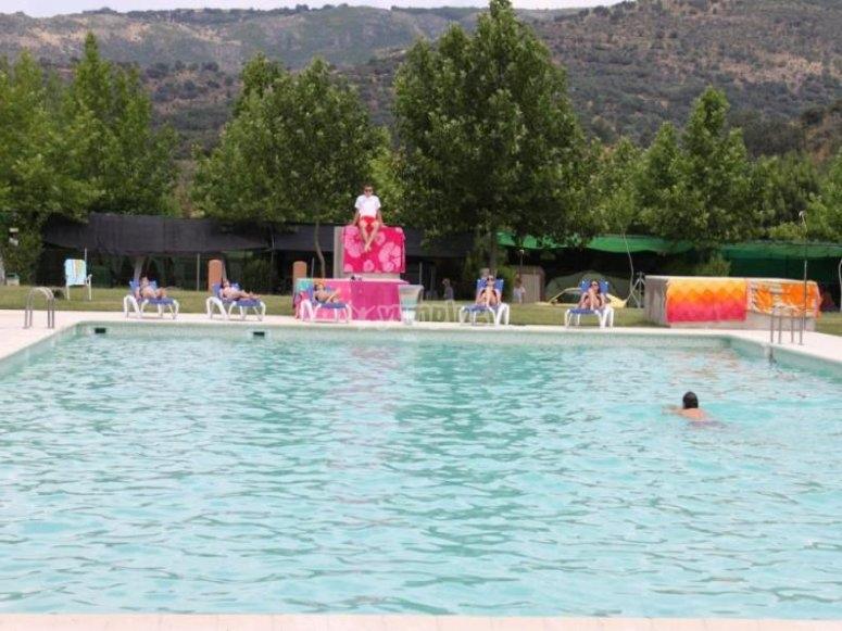 机器人营地的游泳池