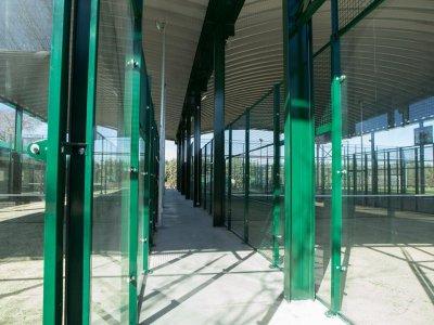 Colegio Los Ángeles Campamentos Urbanos