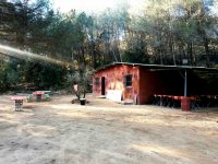 Access area paintball field