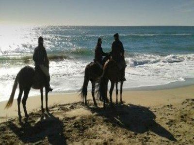 Hipica Gavà-Mar equestre