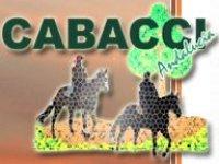Cabacci Almería