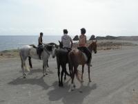 骑马在海边