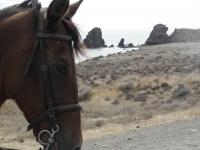 Rutas a caballo espectaculares